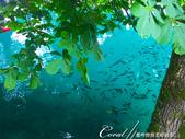 2018不思議之克、斯、義秘境歐遊記(6~4)--閃耀綠寶石光芒的布雷得湖 Lake Bled 與高:28●布雷得湖 Lake Ble是由冰河地形形成的冰蝕湖,擁有豐富的礦物質,因此湖水呈現碧綠且透澈的顏色01.JPG