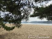 在水一方--初秋記遊之丹後天橋立海上沙洲閒情散策:●沙洲的右邊面宮津灣.JPG
