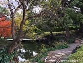 紅葉飄飄15日東京自由行--清澄庭園內的奇石及渡池石塊:12.JPG