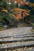 ●成田山公園充滿逸趣的小徑:DSC08409.JPG