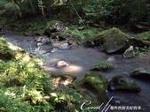 神鍋高原熔岩流處處是風景:IMG_5229.JPG