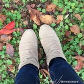 小石川植物園以極優美姿態翩翩落下的樹葉:01.JPG