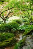 2018加拿大四年一度鮭魚洄遊V.S.洛磯山脈國家公園健走趣(7)--絲毫不馬虎的日本花園:● (1).JPG