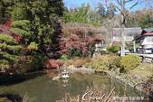 紅葉飄飄15日東京自由行--寶登山尋寶趣:13●入口有一個小小的花園.JPG