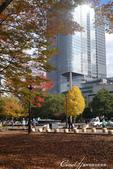 紅葉飄飄15日東京自由行--日比谷公園 :●造訪當日正進行維護工作的熱門取景地──大噴水池.JPG