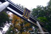 紅葉飄飄15日東京自由行--日光二荒山神社:●OK了!直到特寫很完美的入鏡.JPG