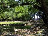 初夏14日自由行--春風吹又生的名古屋城:●水渠內的野草為漫長的修復時光注入了另外一種生命力.JPG
