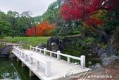 紅葉飄飄15日東京自由行--清澄庭園斑瀾的秋色:03.JPG