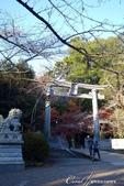 紅葉飄飄15日東京自由行--聚集正能量的香取神宮之旅:23●總門前的狛犬與石鳥居.JPG