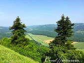 2018不思議之克、斯、義秘境歐遊記(5~1)--自莫托溫山城 Motovun俯瞰漂亮的鄉間景緻:IMG_6285.JPG