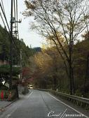 紅葉飄飄15日東京自由行--御岳山:●從JR御岳駅下車後,到斜對面西東京巴士站前往「纜車下」這個站下車.JPG