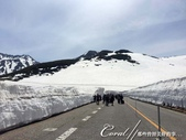 ●2016立山黑部之旅:●部份山頭積雪已溶化,雪壁也因為氣候暖和變矮了.jpg