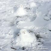 ●2015北海道之旅:●我的雪人Jason(前者),與美眉的雪人合影.jpg