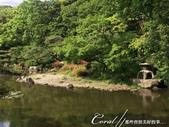 美哉慶澤園--鬧中取靜的小天地:IMG_9672.JPG
