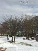 ●2015北海道之旅:●白茫茫一片,無暇的雪,勾起我對於堆一個雪人的無限渴望.jpg