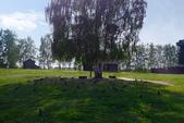2018印象翻轉的俄羅斯奇幻之旅(5-3)--風車、穀倉、果樹、平原與水車,訪古村落之行樂陶然:●鳥兒憩息的大草坪.JPG