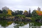 紅葉飄飄15日東京自由行--清澄庭園一眼看不完的池畔風情:04.JPG