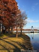 紅葉飄飄15日東京自由行--水光雲影、秋色無邊的水元公園:22●渾然天成的風光,不必特意尋找拍攝角度及特效,手舉起來,對準鏡頭,張張都是屬於自己的經典畫面.JPG
