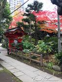 紅葉飄飄15日東京自由行--愛宕神社:12●小小神社內的秋之意境.JPG