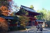 紅葉飄飄15日東京自由行--聚集正能量的香取神宮之旅:26●總門之後是代表性建物──樓門02.JPG
