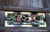 東照宮內彷彿敘述猴子一生的連環雕刻圖:●02-其中最著名的「三猴」──非禮勿視、非禮勿言、非禮勿聽.JPG