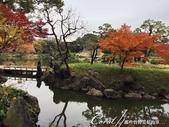 紅葉飄飄15日東京自由行--清澄庭園一眼看不完的池畔風情:14.JPG