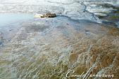 2019自駕隨性之旅(07)--100個死前必去景點之黃石國家公園(門貿斯上台地溫泉區):09●如今,熱泉依舊流動著,河床上的被沖刷的波瀾痕跡又將繼續創造下一個百萬年的勝景 (2).JPG