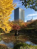 紅葉飄飄15日東京自由行--日比谷公園之美不勝收雲形池:●深秋來東京的日比谷公園,保證不虛此行.JPG