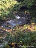 神鍋高原熔岩流處處是風景:IMG_5159.JPG
