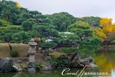紅葉飄飄15日東京自由行--清澄庭園斑瀾的秋色:11.JPG