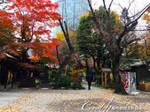 紅葉飄飄15日東京自由行--愛宕神社:15●小小神社內的秋之意境.JPG