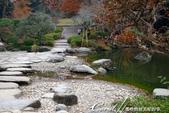 紅葉飄飄15日東京自由行--成田山公園:10 (15)●或許因為岸邊有大大小小的石塊裝飾,或是建造之初賦有關於智慧的意象。總之,三座池中,我特別喜愛文殊