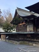 走過2100年歷史的秩父神社:●正殿前的繪馬.JPG