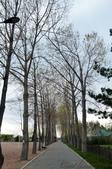 2019Amazing!穿越古絲路上的中亞五國之旅(4-5)--吉爾吉斯斯坦之伊塞克湖渡假村:07●迎賓大道的盡頭即是伊塞克湖,樹蔭間透出的亮光,引領大家走向湖光山色的舞台.JPG