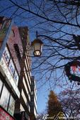 紅葉飄飄15日東京自由行--大学通り:02●走在以文教區著稱的大道上,連路燈也顯得詩意.JPG