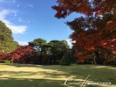紅葉飄飄15日東京自由行--殿ヶ谷戸庭園:17●園區內較高處屬西式風格的寬闊草坪,與低處以次郎弁天池為中心的日式庭園,構成日西合璧獨特風貌.JPG