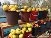 2019Amazing!穿越古絲路上的中亞五國之旅(5-3)--吉爾吉斯斯坦之蒙古包風味餐:08●路上經過一家小攤,販賣的東西還挺多的,動物毛皮、不是當季的蘋果和梨、煙燻魚.JPG