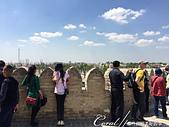 2019Amazing!穿越古絲路上的中亞五國之旅(13-4)--烏茲別克斯坦之布哈拉亞克要塞:25●站在要塞城牆邊上,可清楚看見廣場上的一舉一動,過去的士兵也在此瞭望週邊的一切 (1).JPG