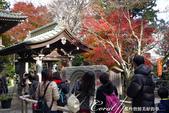紅葉飄飄15日東京自由行--高尾山:43●手洗舍前讓眾人排隊等待鑽過去願望就成真的石輪壁.JPG