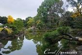 紅葉飄飄15日東京自由行--清澄庭園一眼看不完的池畔風情:01.JPG