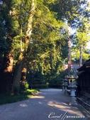紅葉飄飄15日東京自由行--聚集正能量的香取神宮之旅:40●走過歷史千百載的香取神宮,處處可見時光的軌跡與歲月的印記06.JPG