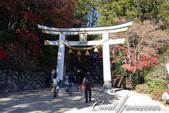 紅葉飄飄15日東京自由行--寶登山尋寶趣:16●寶登山神社帶有「登上寶山」的意涵,是個吉利的神社.JPG