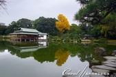 紅葉飄飄15日東京自由行--清澄庭園內的奇石及渡池石塊:02.JPG
