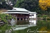 紅葉飄飄15日東京自由行--清澄庭園:15●廣闊的池塘內分佈有三座小島、再加之茶室式的典雅建築與映於水面的小島和樹影形成了庭園內一道亮麗的風景線04.J