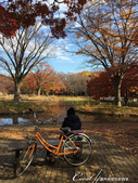 紅葉飄飄15日東京自由行--代代木公園:25●池畔閒坐賞風光的遊人.JPG