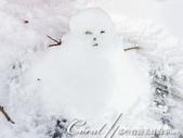 ●2015北海道之旅:●我的雪人一號Jason.jpg