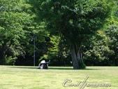 初夏14日自由行--春風吹又生的名古屋城:●人生難得幾回有。瞧這位老兄悠哉的躺在樹蔭下閱讀他的文件,想必是位積極認真的上班族02.JPG