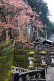 紅葉飄飄15日東京自由行--大猷院:●經過兩旁樸素的石燈籠,便來到仁王門跟前02.JPG