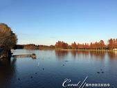 紅葉飄飄15日東京自由行--水光雲影、秋色無邊的水元公園:17●在沿著水域漫走的同時,孩童在對岸遊戲區的歡叫聲,一度打斷聆聽鳥語的意興,這也才驚覺,走了一段不算短的時