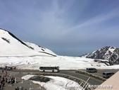 ●2016立山黑部之旅:●一台台高原公共汽車載著滿滿的觀光客,來到2390公尺高的雪之大谷.jpg